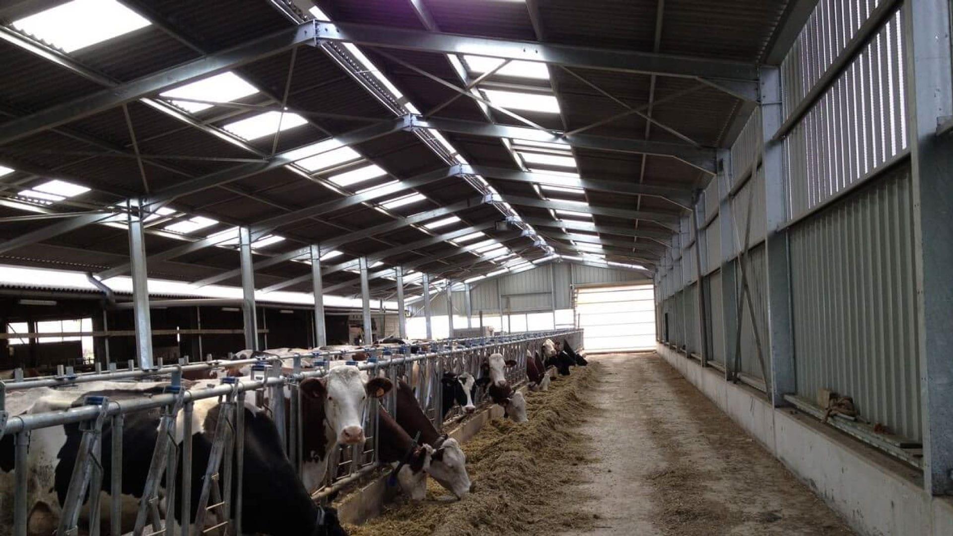 Farm building light panels sydney