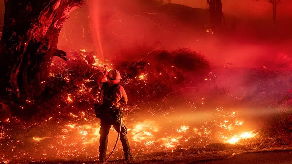 bushfires death toll sydney